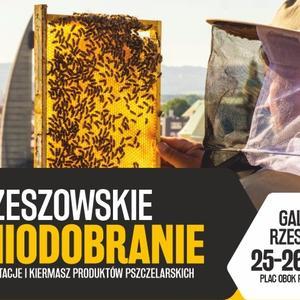 Degustacja i kiermasz produktów pszczelarskich w Galerii Rzeszów